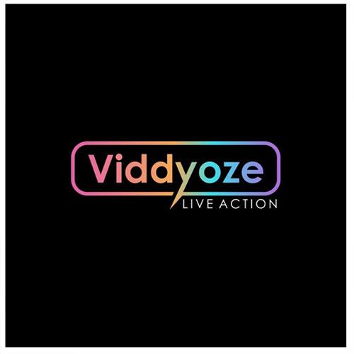 Custom Deal for Viddyoze